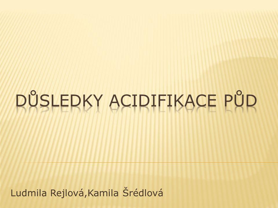 Ludmila Rejlová,Kamila Šrédlová