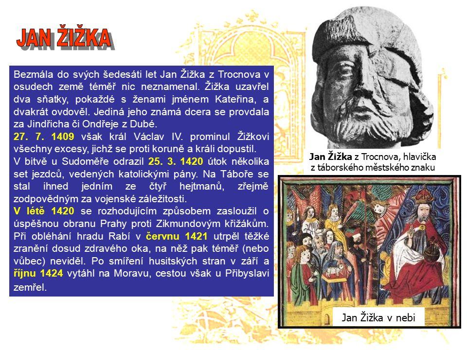 Bezmála do svých šedesáti let Jan Žižka z Trocnova v osudech země téměř nic neznamenal.
