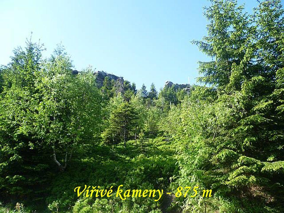 Vířivé kameny jsou dvě rovnoběžné skalní zdi tvořící nejvýraznější skalní výchozy na severovýchodním úbočí hory Ještěd nedaleko od krajského města Liberec.