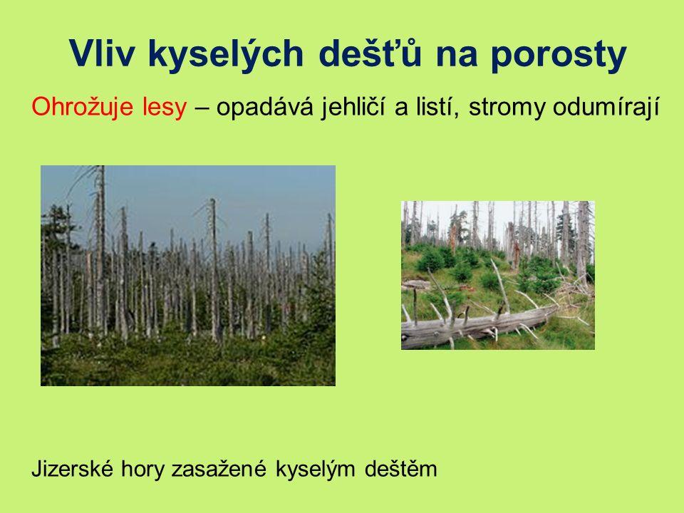 Vliv kyselých dešťů na porosty Ohrožuje lesy – opadává jehličí a listí, stromy odumírají Jizerské hory zasažené kyselým deštěm