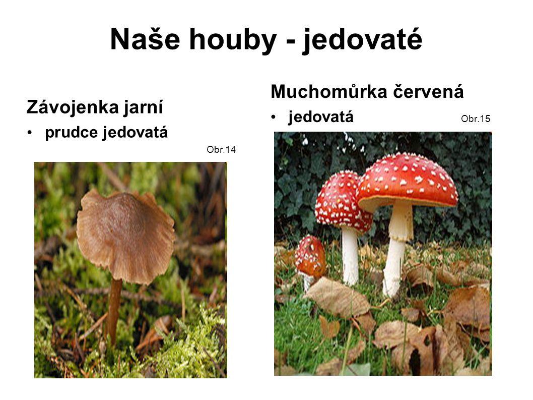 Naše houby - jedovaté Závojenka jarní prudce jedovatá Obr.14 Muchomůrka červená jedovatá Obr.15