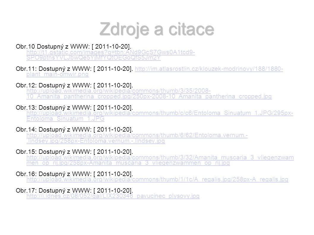 Zdroje a citace Obr.10 Dostupný z WWW: [ 2011-10-20].