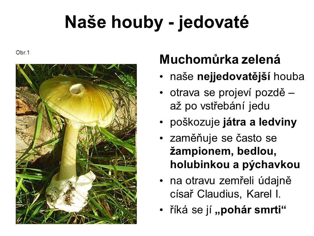 Naše houby - jedovaté Muchomůrka tygrovaná prudce jedovatá zaměňuje se s růžovkou Obr.12 Závojenka olovová prudce jedovatá zaměňuje se s hřibem dubovým Obr.13