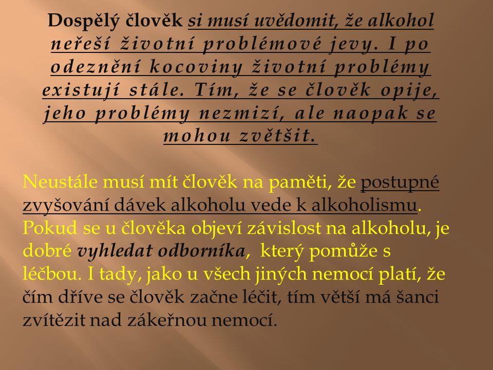 Dospělý člověk si musí uvědomit, že alkohol neřeší životní problémové jevy.