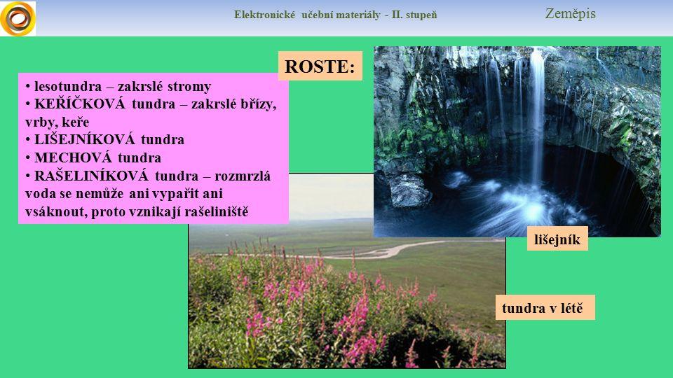 Elektronické učební materiály - II.stupeň Zeměpis Poznáte zvířata tundry.