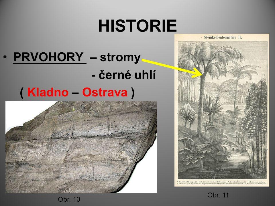HISTORIE PRVOHORY – stromy - černé uhlí ( Kladno – Ostrava ) Obr. 10 Obr. 11