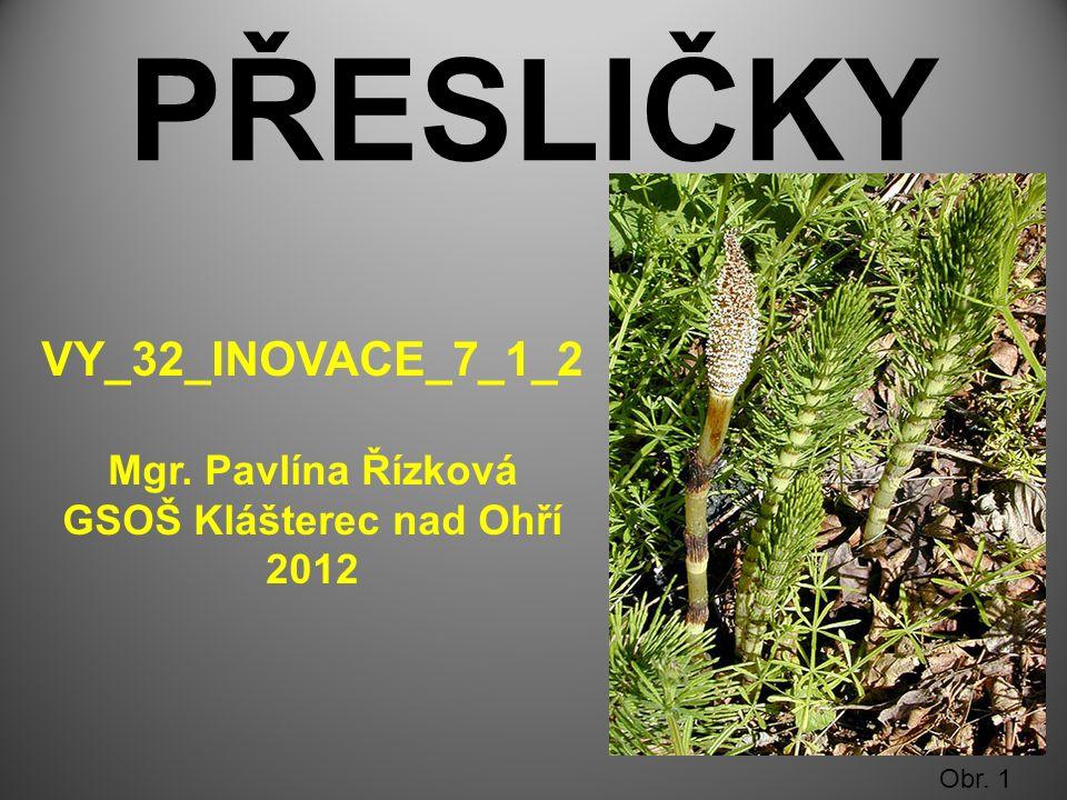 PŘESLIČKY Obr. 1 VY_32_INOVACE_7_1_2 Mgr. Pavlína Řízková GSOŠ Klášterec nad Ohří 2012