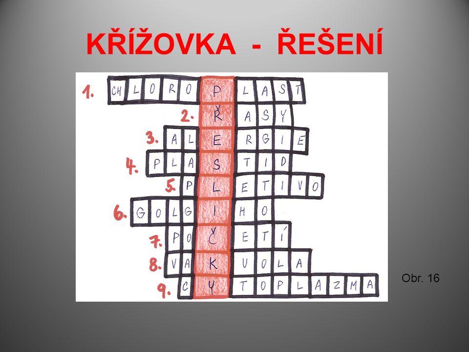 KŘÍŽOVKA - ŘEŠENÍ Obr. 16