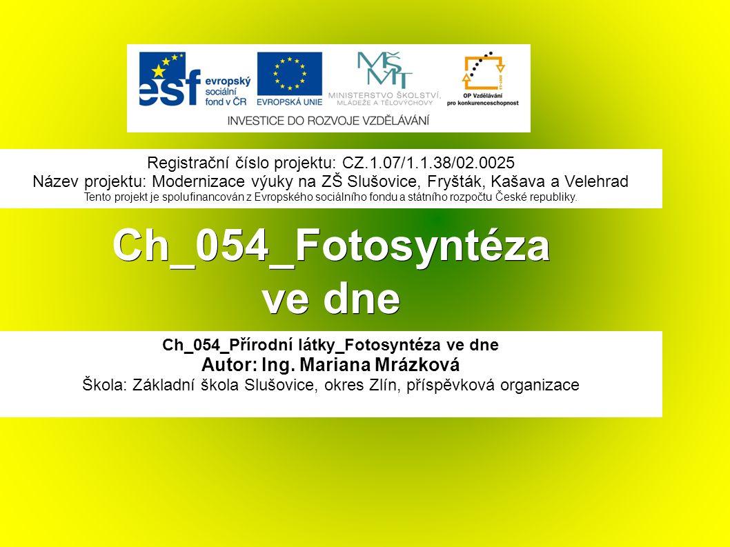 Ch_054_Fotosyntéza ve dne Ch_054_Přírodní látky_Fotosyntéza ve dne Autor: Ing.