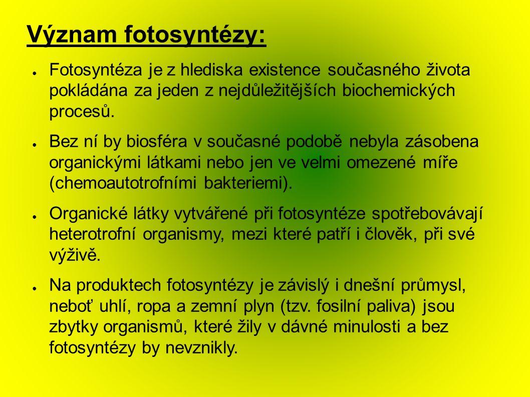 Význam fotosyntézy: ● Fotosyntéza je z hlediska existence současného života pokládána za jeden z nejdůležitějších biochemických procesů.