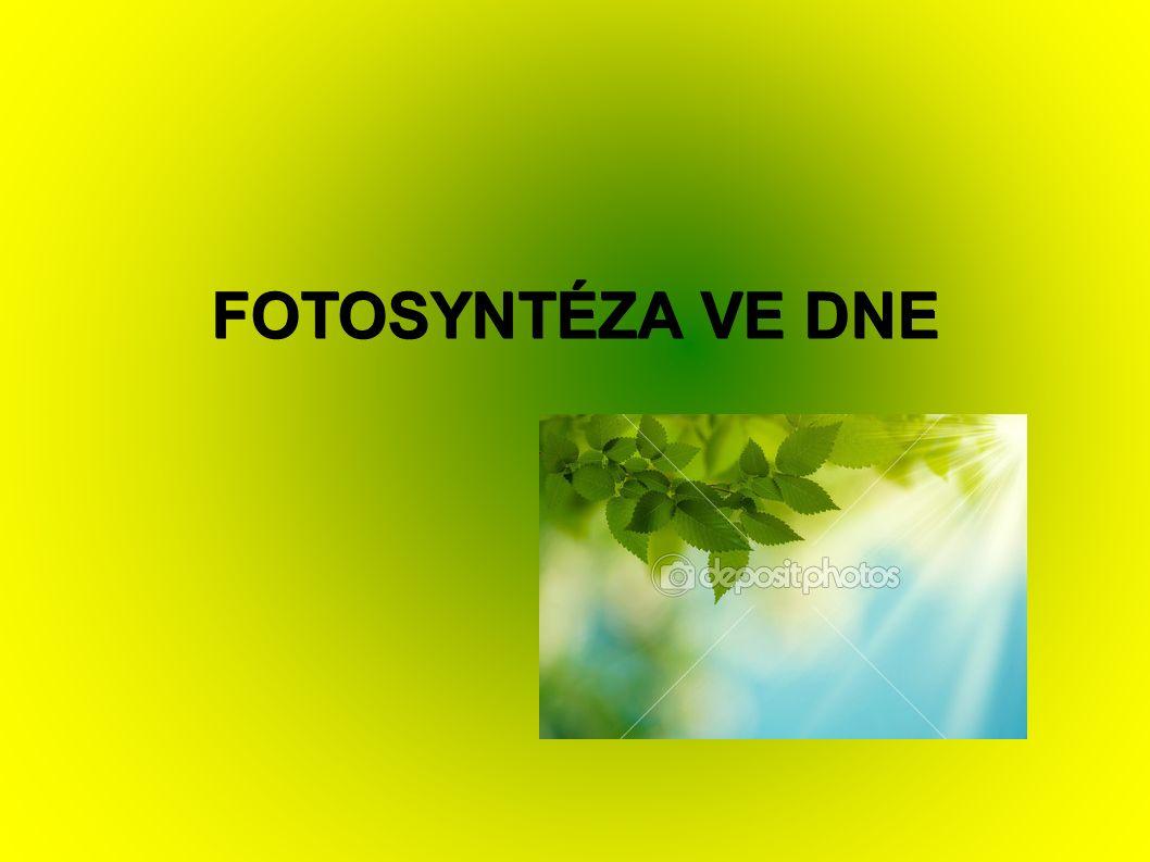 """Definice: ● Fotosyntéza (z řeckého fós, fótos – """"světlo a synthesis – """"shrnutí , """"skládání ) je schopnost zelených rostlin měnit světelnou energii na energii chemických vazeb."""