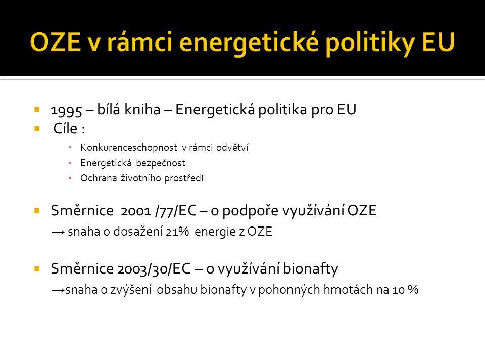  1995 – bílá kniha – Energetická politika pro EU  Cíle : ▪ Konkurenceschopnost v rámci odvětví ▪ Energetická bezpečnost ▪ Ochrana životního prostředí  Směrnice 2001 /77/EC – o podpoře využívání OZE → snaha o dosažení 21% energie z OZE  Směrnice 2003/30/EC – o využívání bionafty → snaha o zvýšení obsahu bionafty v pohonných hmotách na 10 %