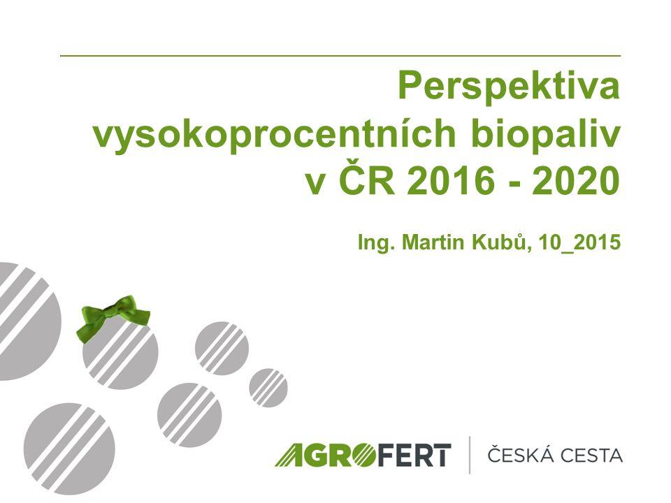 Perspektiva vysokoprocentních biopaliv v ČR 2016 - 2020 Ing. Martin Kubů, 10_2015