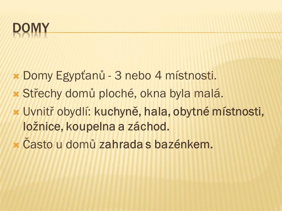  Domy Egypťanů - 3 nebo 4 místnosti.  Střechy domů ploché, okna byla malá.  Uvnitř obydlí: kuchyně, hala, obytné místnosti, ložnice, koupelna a zác