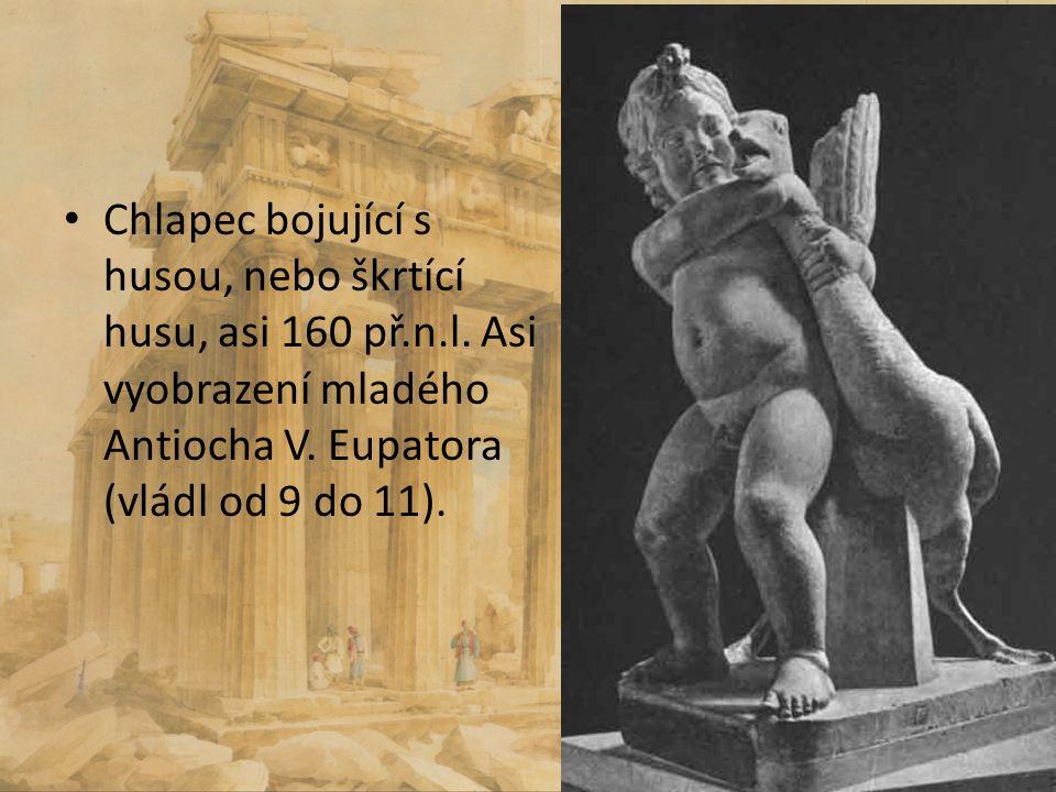 Chlapec bojující s husou, nebo škrtící husu, asi 160 př.n.l. Asi vyobrazení mladého Antiocha V. Eupatora (vládl od 9 do 11).