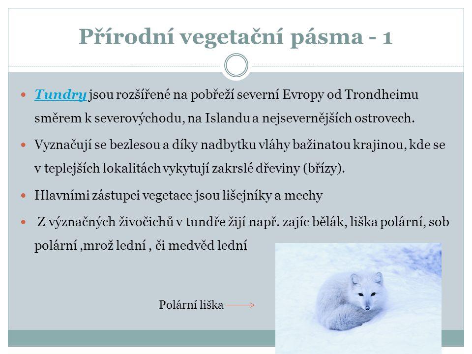Přírodní vegetační pásma - 1 Tundry jsou rozšířené na pobřeží severní Evropy od Trondheimu směrem k severovýchodu, na Islandu a nejsevernějších ostrovech.