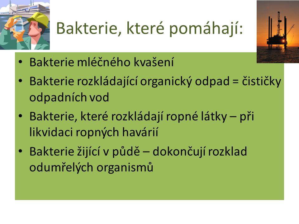 Bakterie, které pomáhají: Bakterie mléčného kvašení Bakterie rozkládající organický odpad = čističky odpadních vod Bakterie, které rozkládají ropné látky – při likvidaci ropných havárií Bakterie žijící v půdě – dokončují rozklad odumřelých organismů