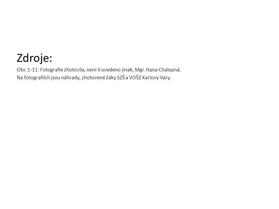 Zdroje: Obr. 1-11: Fotografie zhotovila, není-li uvedeno jinak, Mgr. Hana Chalupná. Na fotografiích jsou náhrady, zhotovené žáky SZŠ a VOŠZ Karlovy Va