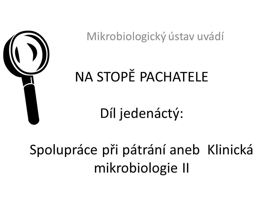 NA STOPĚ PACHATELE Díl jedenáctý: Spolupráce při pátrání aneb Klinická mikrobiologie II Mikrobiologický ústav uvádí 