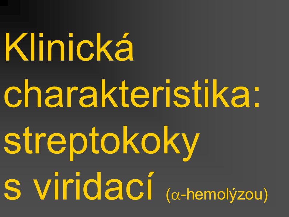 Klinická charakteristika: streptokoky s viridací (  -hemolýzou)