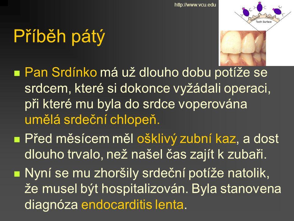 Příběh pátý Pan Srdínko má už dlouho dobu potíže se srdcem, které si dokonce vyžádali operaci, při které mu byla do srdce voperována umělá srdeční chlopeň.