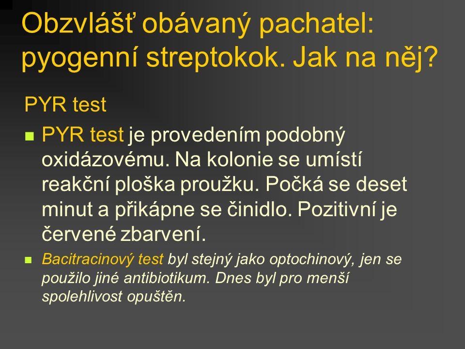 Obzvlášť obávaný pachatel: pyogenní streptokok. Jak na něj.