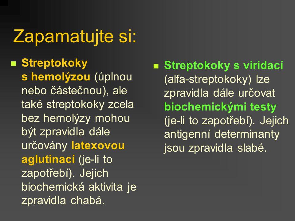 Zapamatujte si: Streptokoky s hemolýzou (úplnou nebo částečnou), ale také streptokoky zcela bez hemolýzy mohou být zpravidla dále určovány latexovou aglutinací (je-li to zapotřebí).
