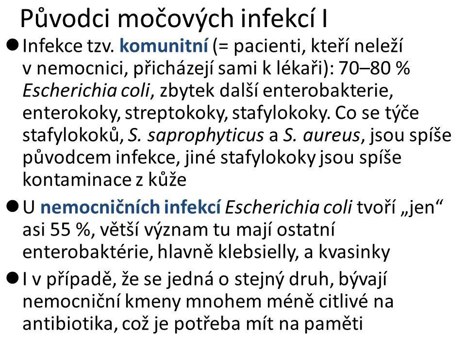 Původci močových infekcí I Infekce tzv. komunitní (= pacienti, kteří neleží v nemocnici, přicházejí sami k lékaři): 70–80 % Escherichia coli, zbytek d