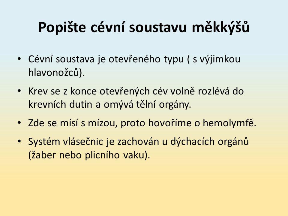 Popište cévní soustavu měkkýšů Cévní soustava je otevřeného typu ( s výjimkou hlavonožců).