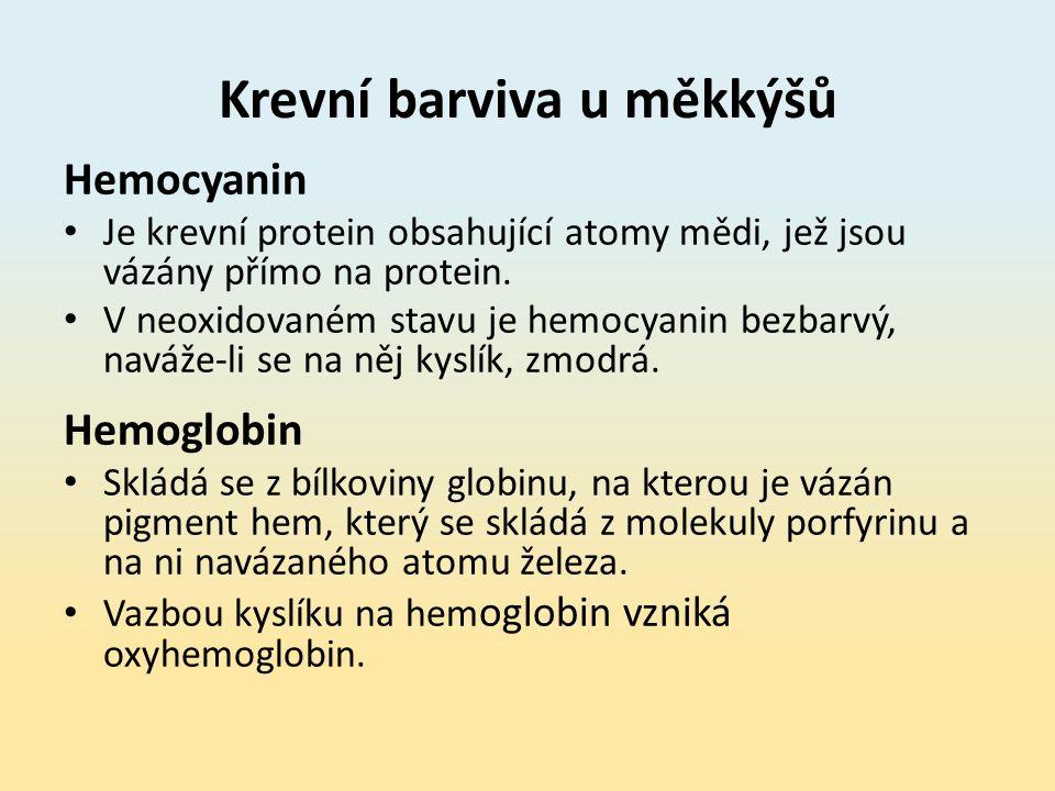 Krevní barviva u měkkýšů Hemocyanin Je krevní protein obsahující atomy mědi, jež jsou vázány přímo na protein.