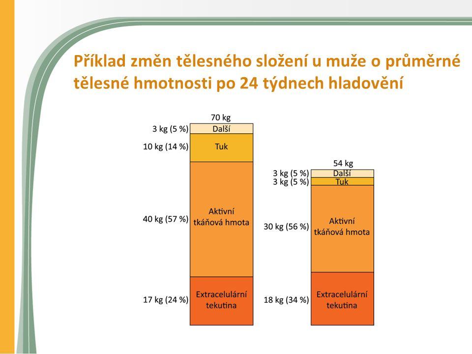 Příklad změn tělesného složení u muže o průměrné tělesné hmotnosti po 24 týdnech hladovění