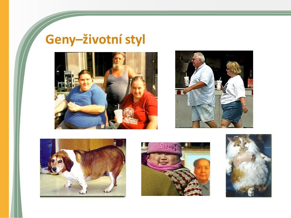 Geny–životní styl