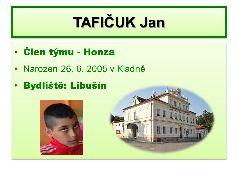 Člen týmu - Honza Narozen 26. 6. 2005 v Kladně Bydliště: Libušín Člen týmu - Honza Narozen 26.