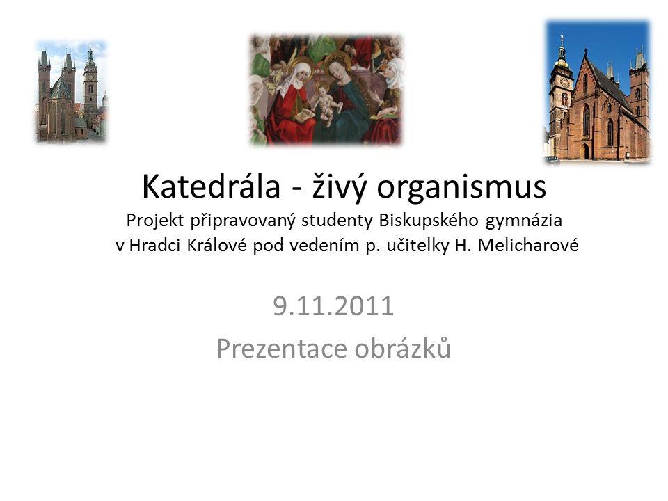 Katedrála - živý organismus Projekt připravovaný studenty Biskupského gymnázia v Hradci Králové pod vedením p.