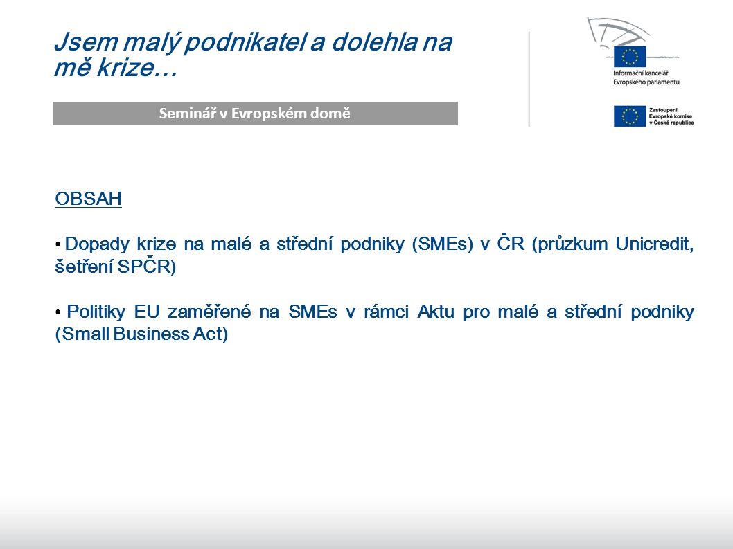 2 Jsem malý podnikatel a dolehla na mě krize… Seminář v Evropském domě OBSAH Dopady krize na malé a střední podniky (SMEs) v ČR (průzkum Unicredit, šetření SPČR) Politiky EU zaměřené na SMEs v rámci Aktu pro malé a střední podniky (Small Business Act)