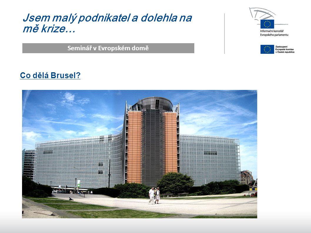 7 Jsem malý podnikatel a dolehla na mě krize… Seminář v Evropském domě Co dělá Brusel