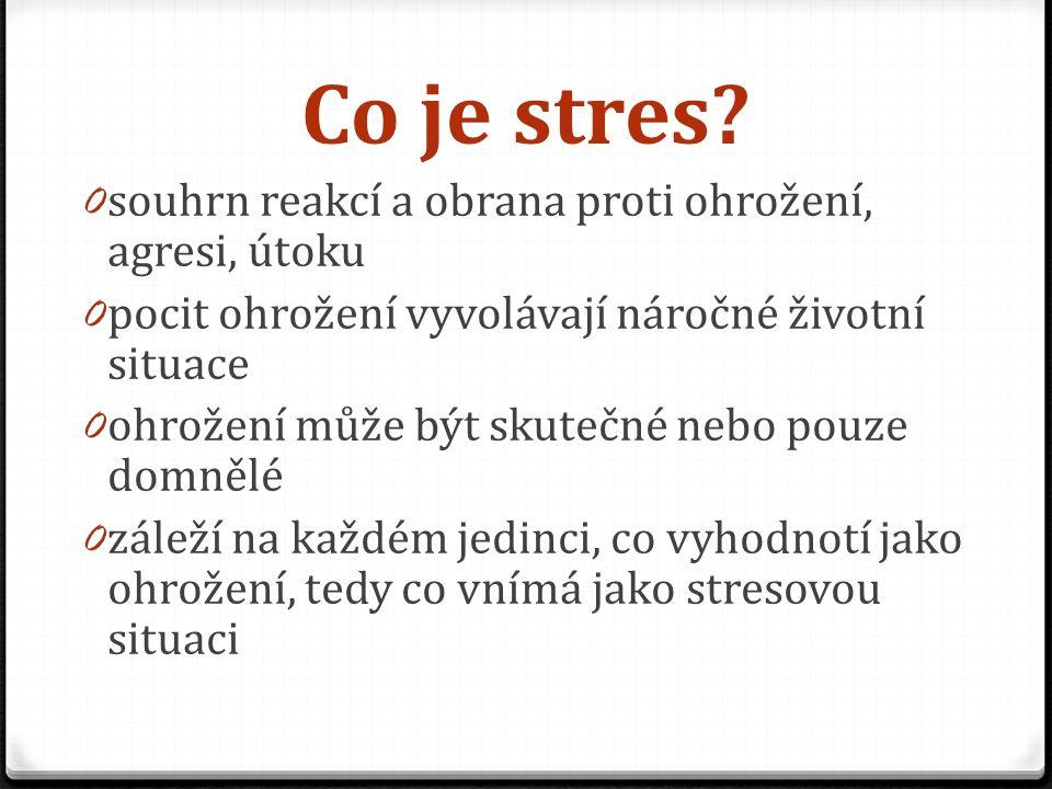 Co je stres.