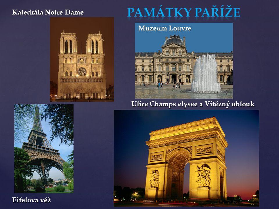 Katedrála Notre Dame Eifelova věž Ulice Champs elysee a Vítězný oblouk Muzeum Louvre