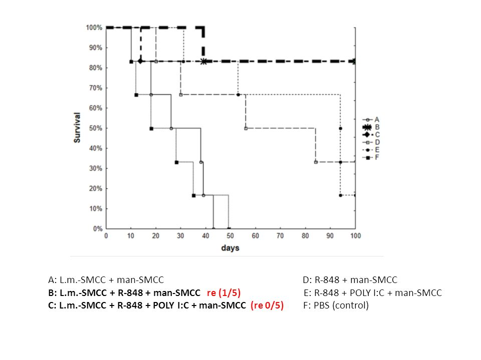 A: L.m.-SMCC + man-SMCC D: R-848 + man-SMCC B: L.m.-SMCC + R-848 + man-SMCC re (1/5) E: R-848 + POLY I:C + man-SMCC C: L.m.-SMCC + R-848 + POLY I:C +