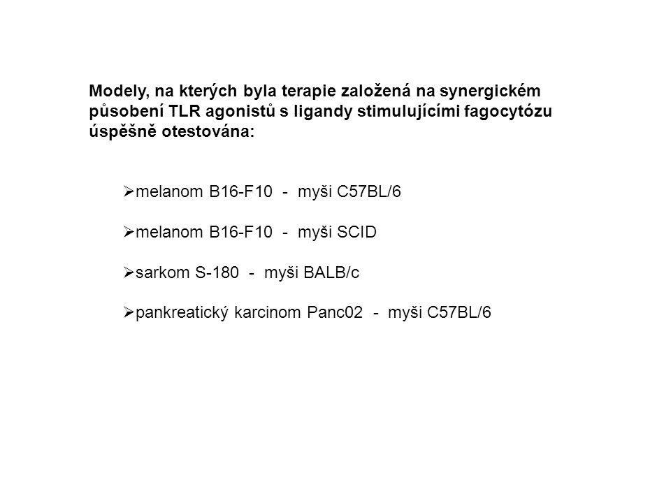 Modely, na kterých byla terapie založená na synergickém působení TLR agonistů s ligandy stimulujícími fagocytózu úspěšně otestována:  melanom B16-F10 - myši C57BL/6  melanom B16-F10 - myši SCID  sarkom S-180 - myši BALB/c  pankreatický karcinom Panc02 - myši C57BL/6