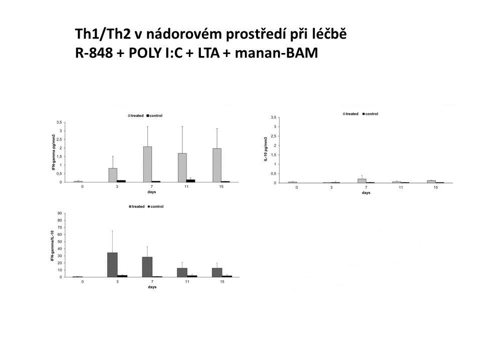 Th1/Th2 v nádorovém prostředí při léčbě R-848 + POLY I:C + LTA + manan-BAM