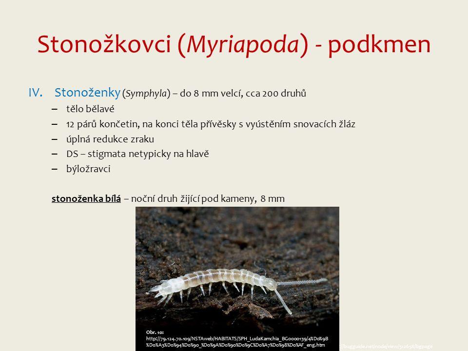 Stonožkovci (Myriapoda) - podkmen IV.Stonoženky (Symphyla) – do 8 mm velcí, cca 200 druhů – tělo bělavé – 12 párů končetin, na konci těla přívěsky s vyústěním snovacích žláz – úplná redukce zraku – DS – stigmata netypicky na hlavě – býložravci stonoženka bílá – noční druh žijící pod kameny, 8 mm Obr.