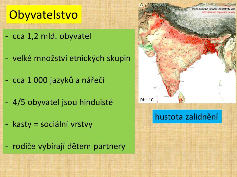 Obyvatelstvo -cca 1,2 mld. obyvatel -velké množství etnických skupin -cca 1 000 jazyků a nářečí -4/5 obyvatel jsou hinduisté -kasty = sociální vrstvy