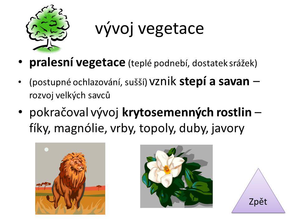 vývoj vegetace pralesní vegetace (teplé podnebí, dostatek srážek) (postupné ochlazování, sušší) vznik stepí a savan – rozvoj velkých savců pokračoval