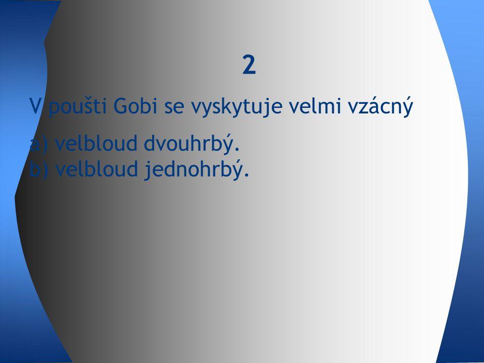V poušti Gobi se vyskytuje velmi vzácný a) velbloud dvouhrbý. b) velbloud jednohrbý. 2