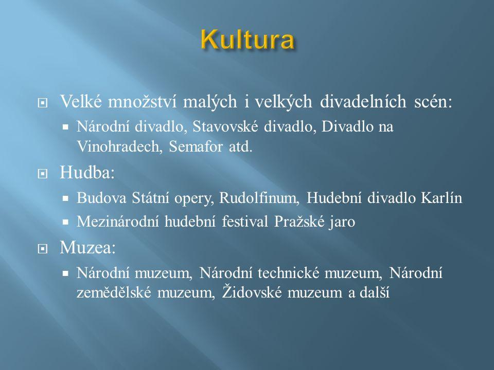  Velké množství malých i velkých divadelních scén:  Národní divadlo, Stavovské divadlo, Divadlo na Vinohradech, Semafor atd.