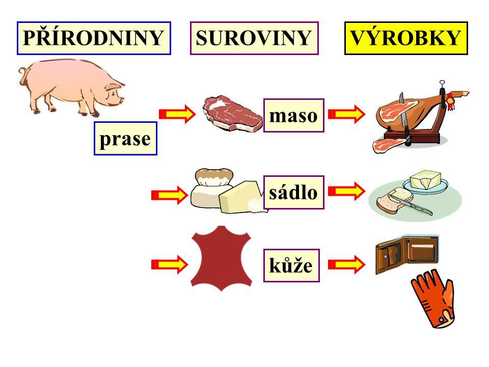PŘÍRODNINYSUROVINYVÝROBKY prase maso sádlo kůže