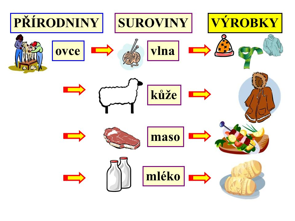 PŘÍRODNINYSUROVINYVÝROBKY ovcevlna kůže maso mléko