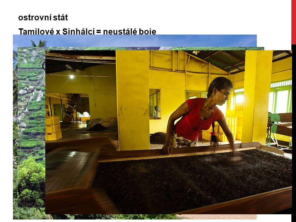ostrovní stát Tamilové x Sinhálci = neustálé boje turistický ráj vývoz : čaj, kaučuk, výrobky z kokosových ořechů, textil, drahokamy, ropné výrobky Čajové plantáže