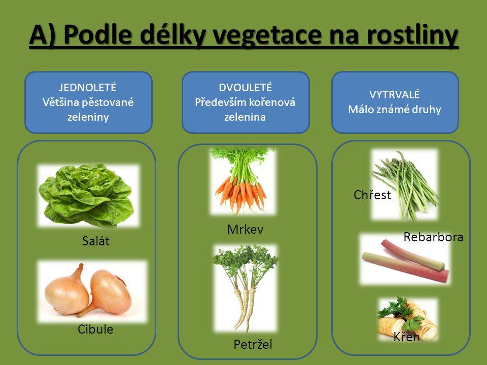 JEDNOLETÉ Většina pěstované zeleniny DVOULETÉ Především kořenová zelenina VYTRVALÉ Málo známé druhy Salát Cibule Mrkev Rebarbora Petržel Křen Chřest